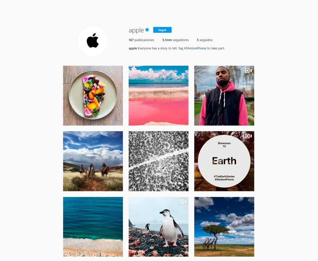 tipos marketing contenidos instagram apple